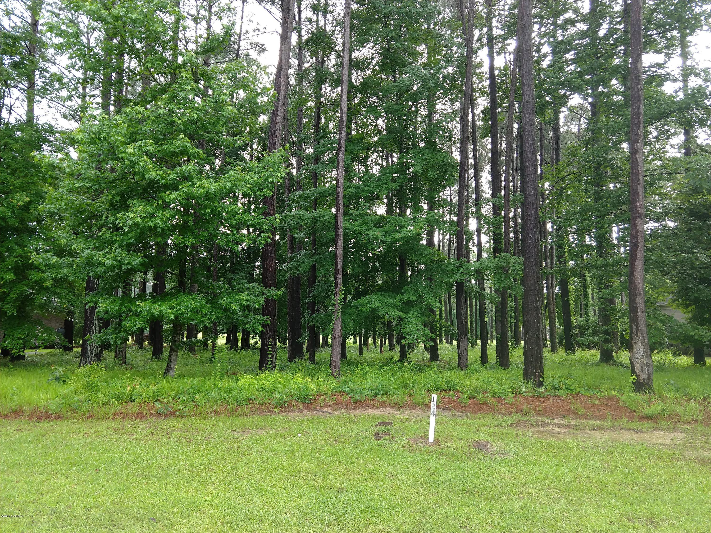 Lot 124 Santee Drive, Chocowinity, North Carolina 27817, ,Residential land,For sale,Santee,100118789