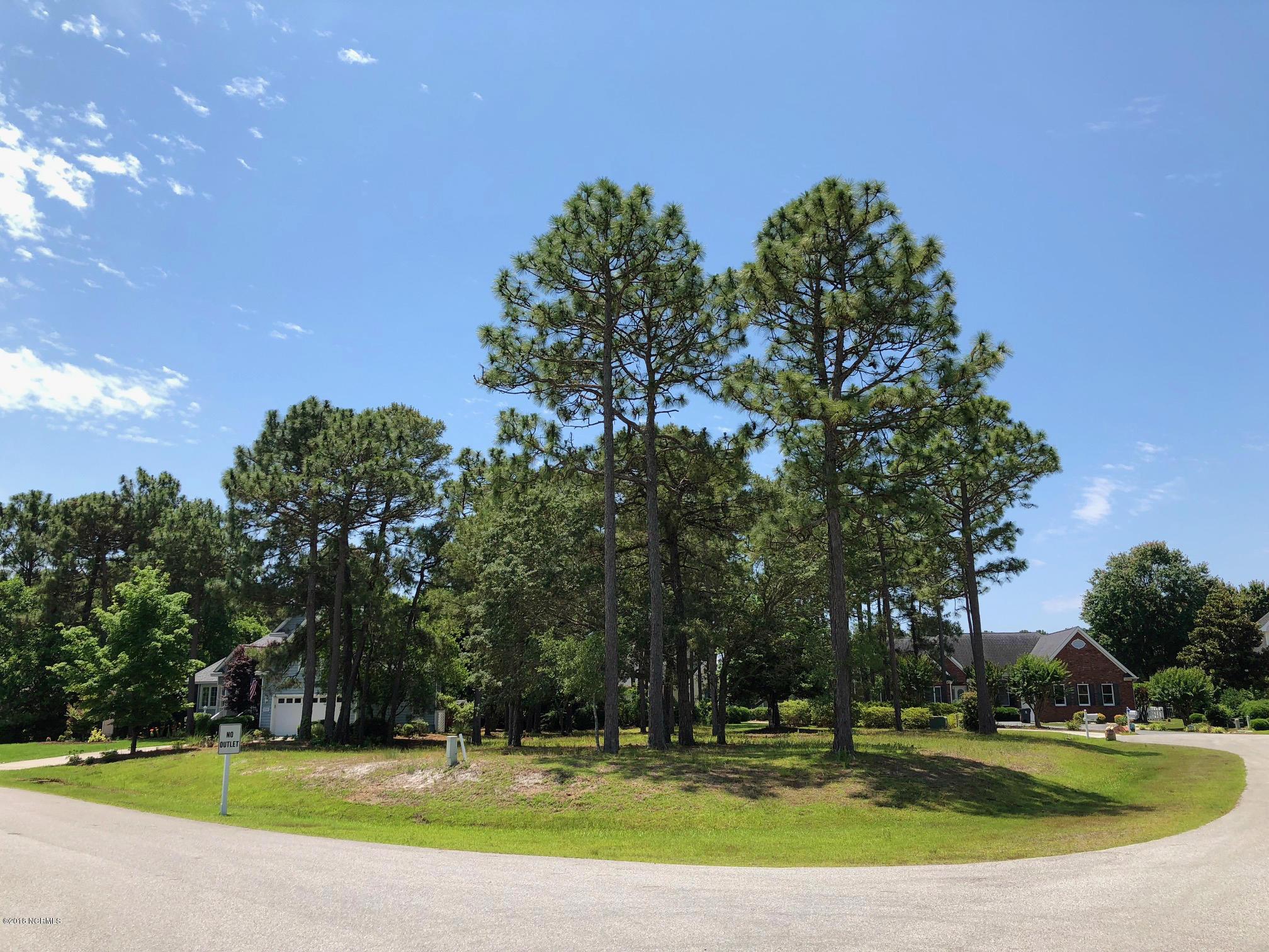 Carolina Plantations Real Estate - MLS Number: 100098123
