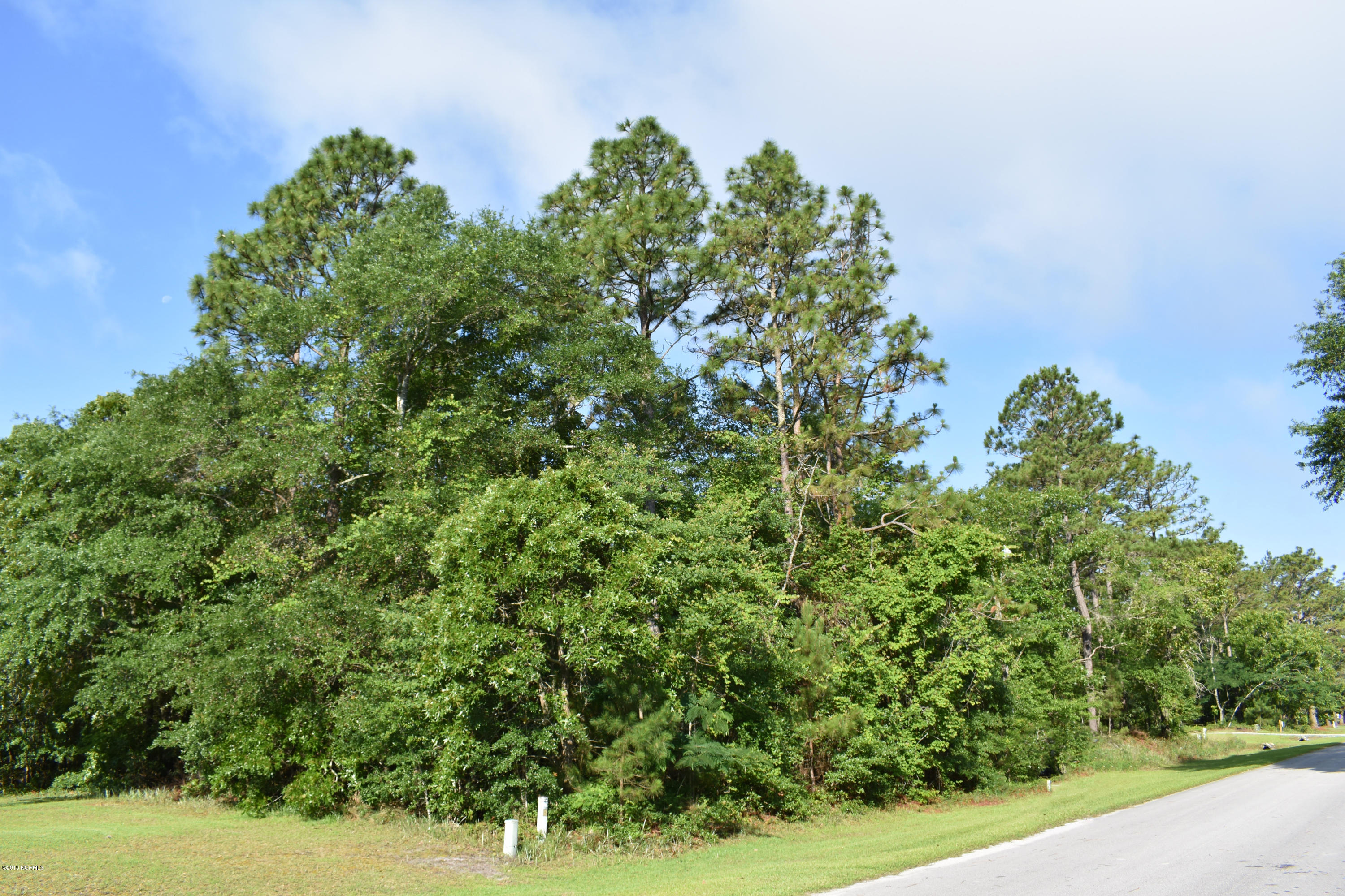 Lots 14&15 Phillips Drive, Minnesott Beach, North Carolina 28510, ,Residential land,For sale,Phillips,100119044