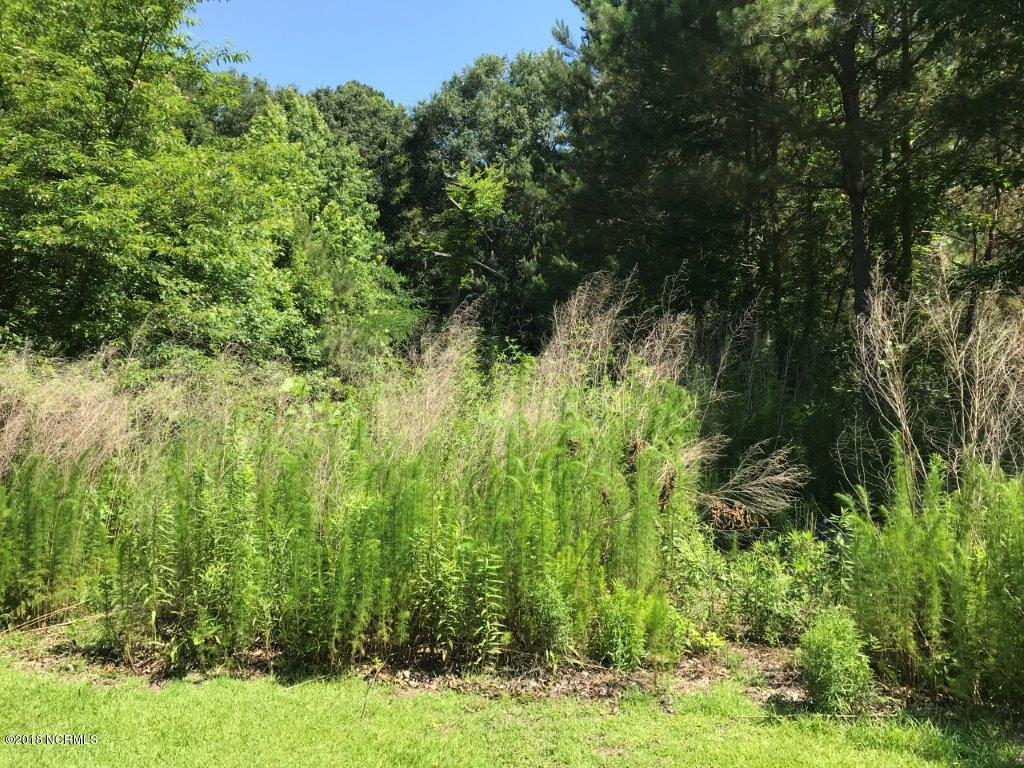 0 Gray Branch Ch Road, Deep Run, North Carolina 28525, ,Residential land,For sale,Gray Branch Ch,100120188
