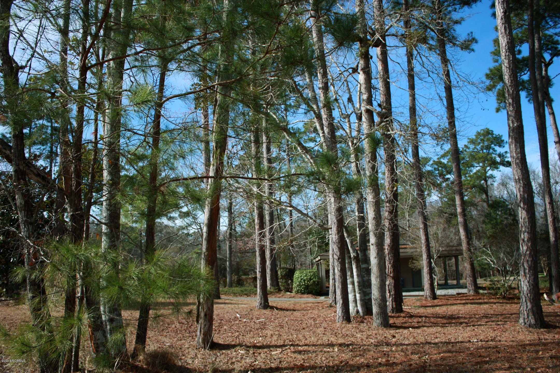 Carolina Plantations Real Estate - MLS Number: 100120510