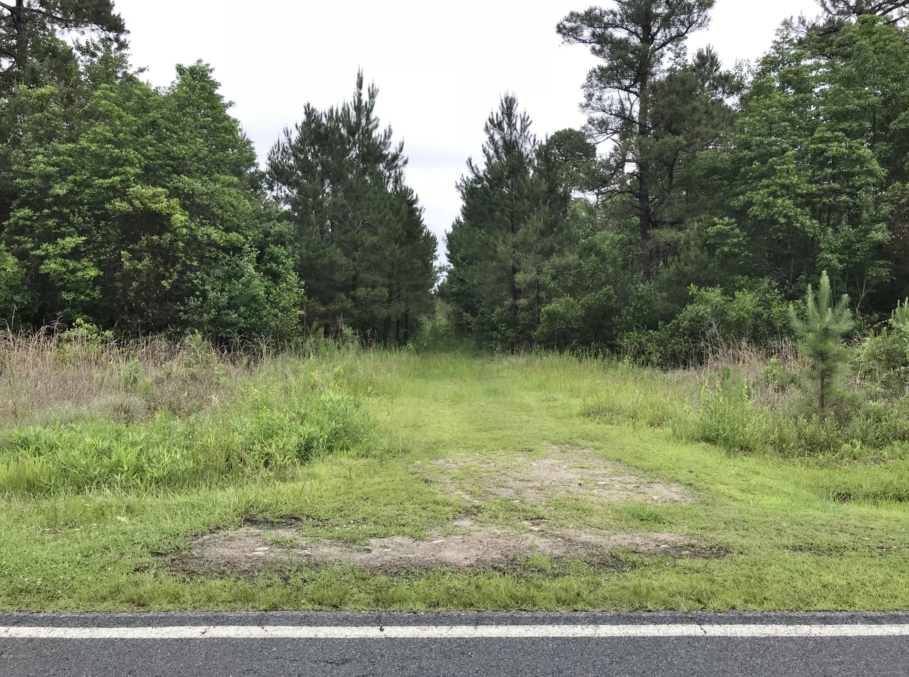Tbd Hwy 258, Trenton, North Carolina 28585, ,Undeveloped,For sale,Hwy 258,100031792