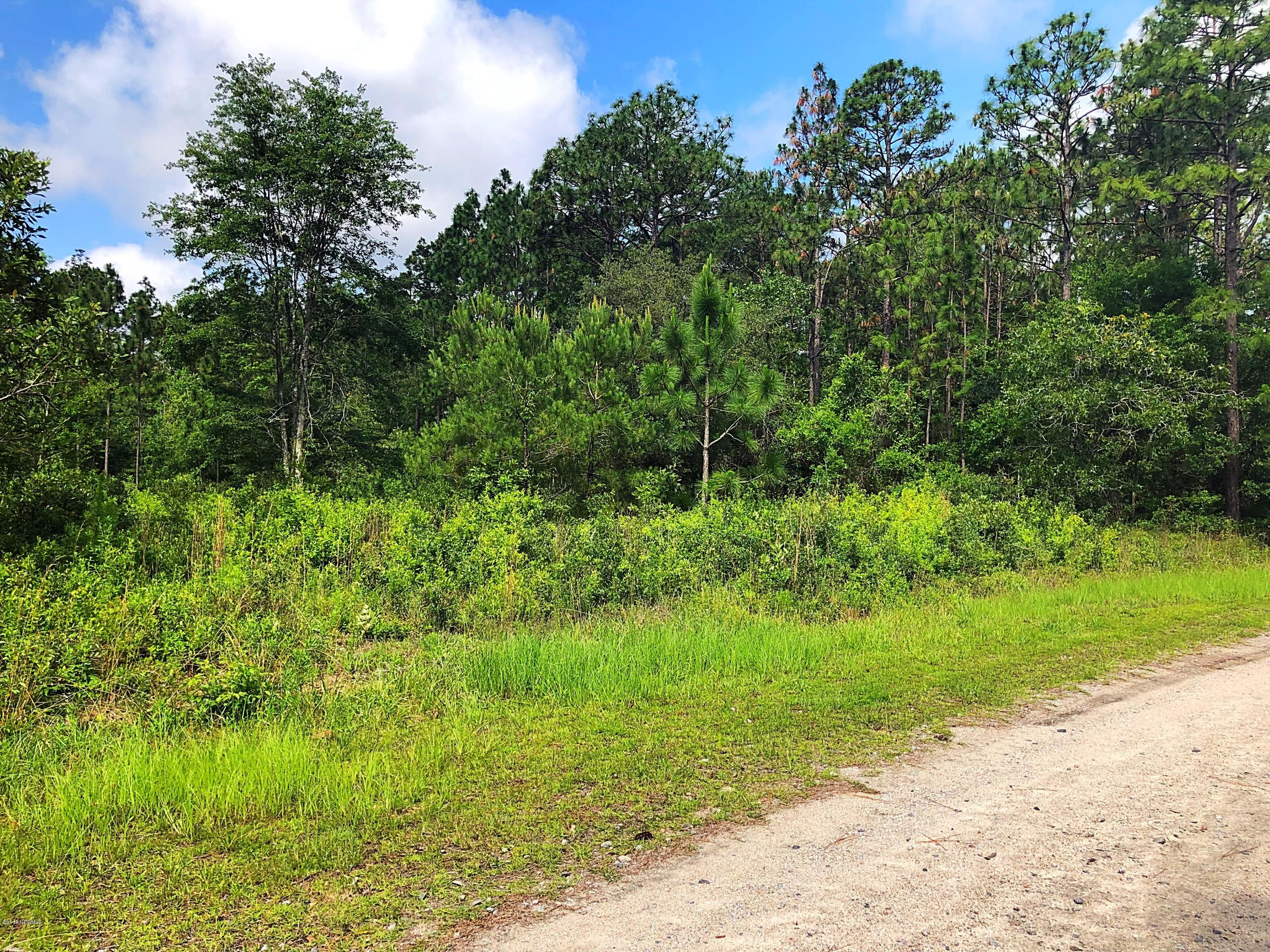 Lot 18 North Shore Drive, Southport, North Carolina 28461, ,Residential land,For sale,North Shore,100121316