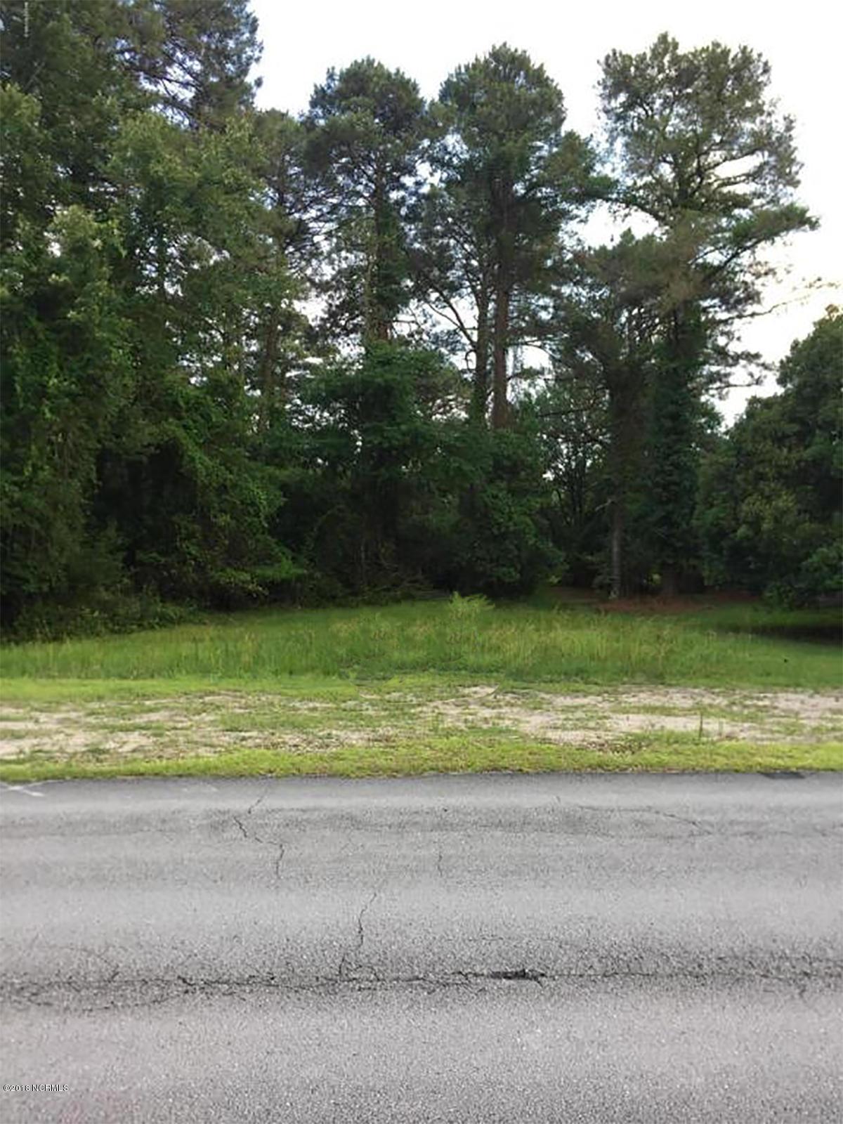 1911 Caracara Drive, New Bern, North Carolina, ,Residential land,For sale,Caracara,100120896