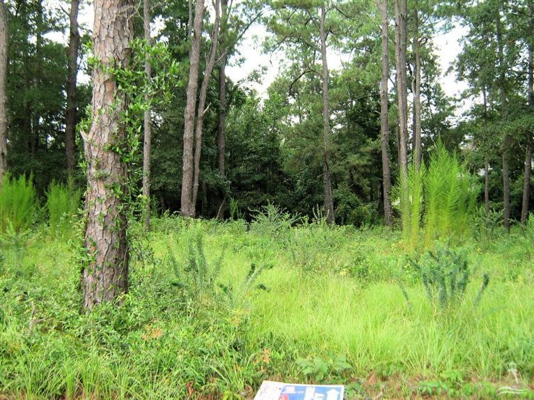 2733 Bellamy Drive, Supply, North Carolina 28462, ,Residential land,For sale,Bellamy,100123555