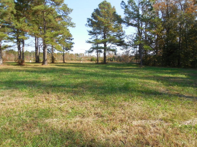 000 Pleasant Hill Road, Rocky Mount, North Carolina 27801, ,Undeveloped,For sale,Pleasant Hill,100124842