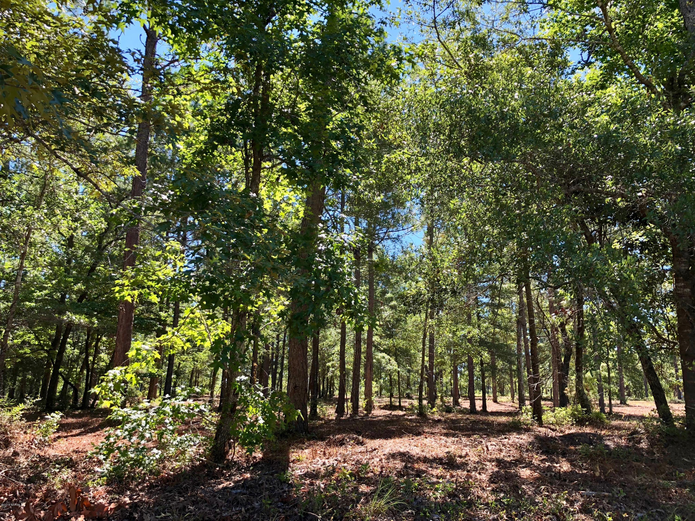 Carolina Plantations Real Estate - MLS Number: 100126874