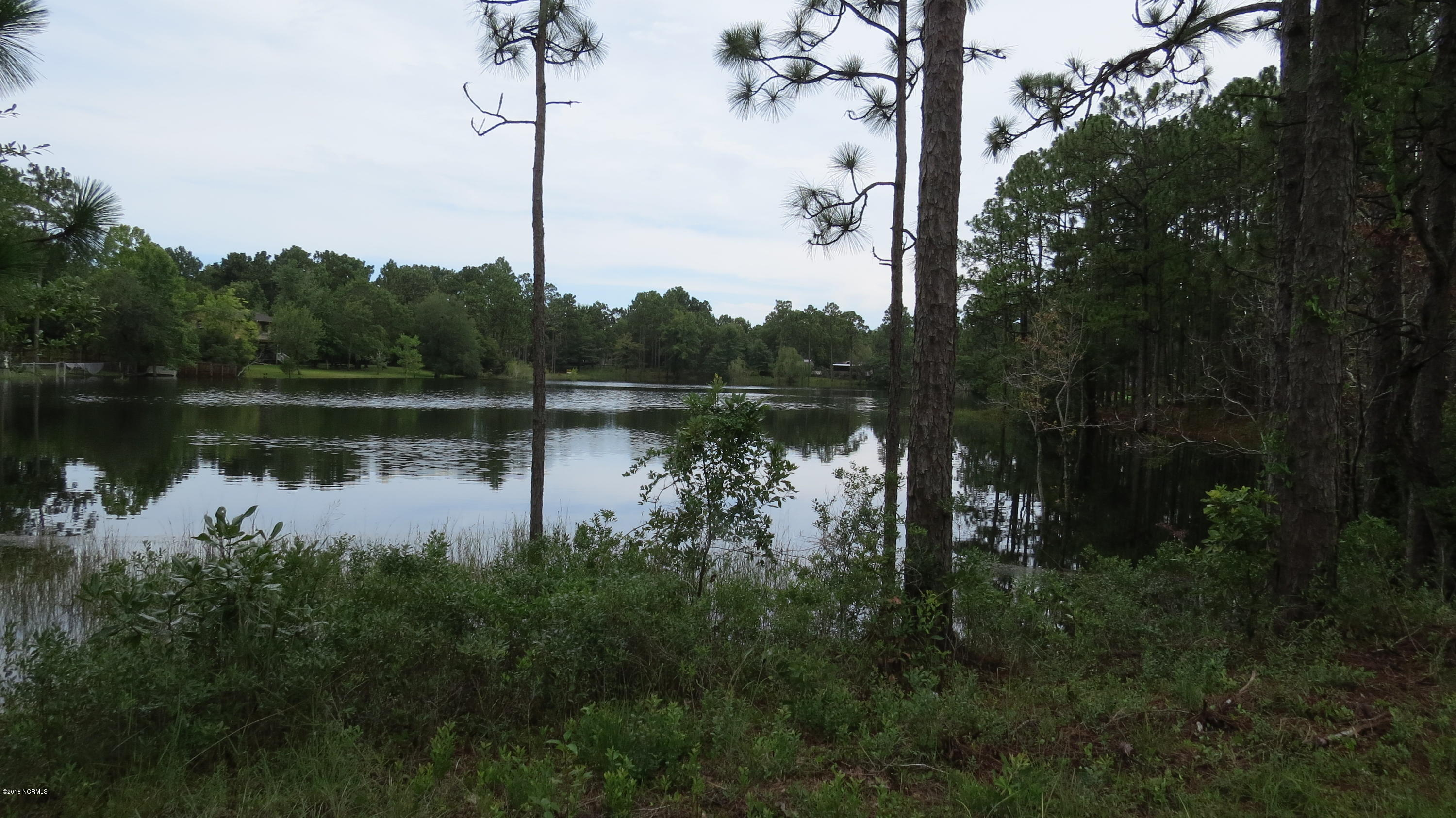 2353 Frink Lake Drive, Southport, North Carolina 28461, ,Residential land,For sale,Frink Lake,100127760