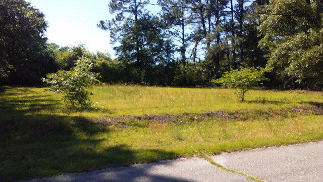00 Lake Drive, Laurinburg, North Carolina, ,Residential land,For sale,Lake,96036580