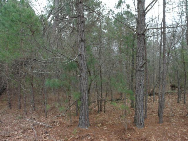 0 Lakeside Drive, North Carolina 28379, ,Residential land,For sale,Lakeside,96036928