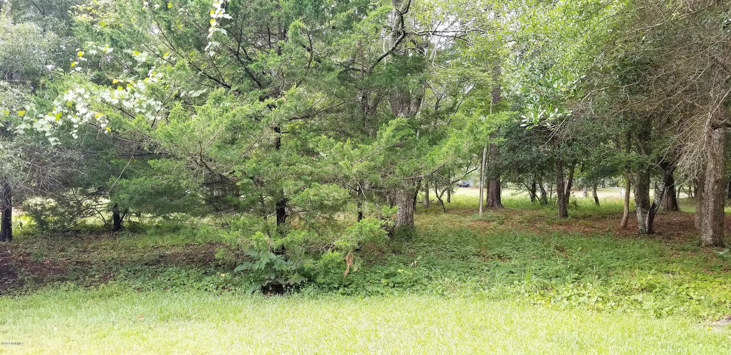 823 Blue Gill Court, Bolivia, North Carolina, ,Residential land,For sale,Blue Gill,100130570