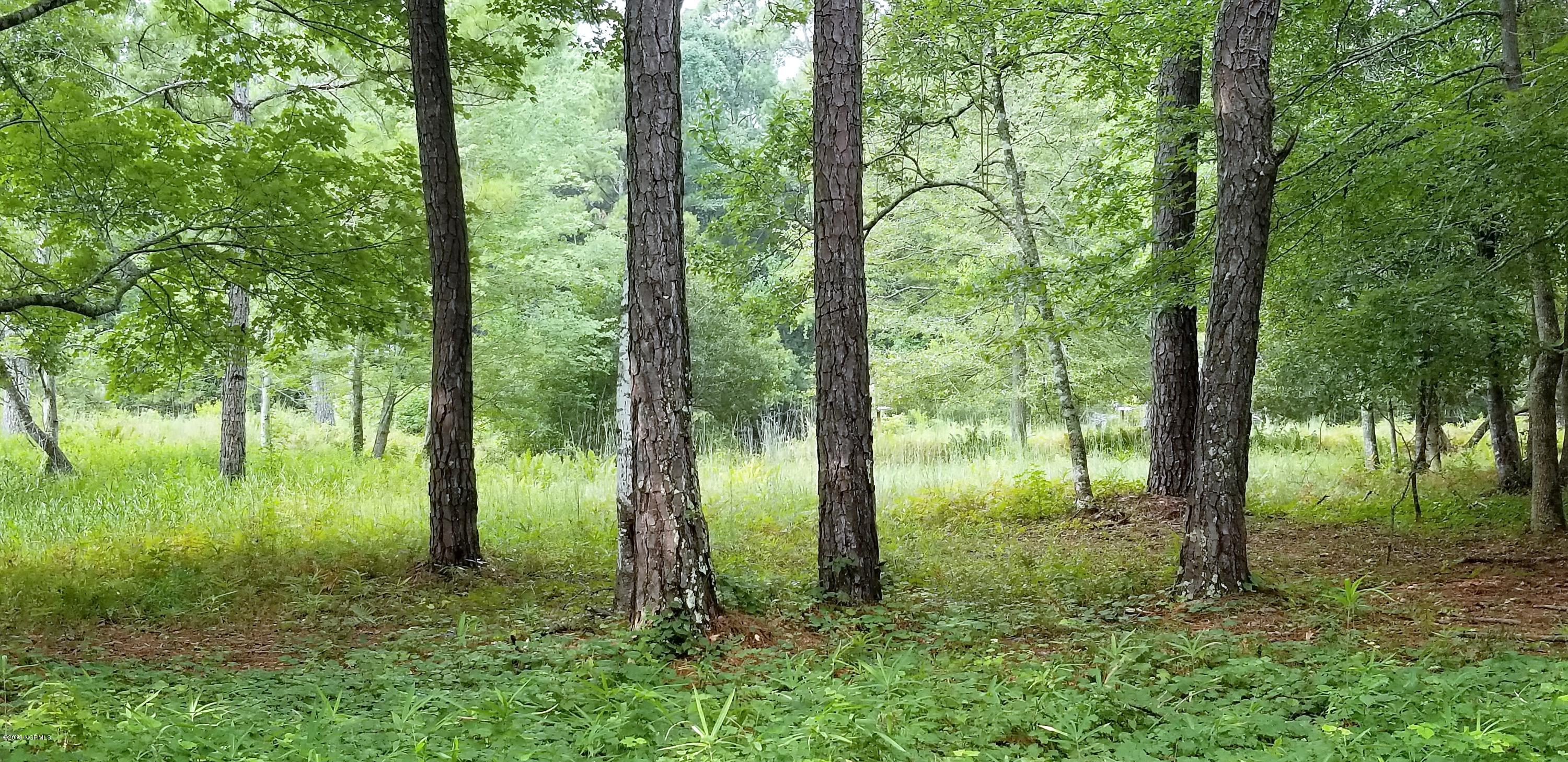 837 Blue Gill Court, Bolivia, North Carolina, ,Residential land,For sale,Blue Gill,100130592