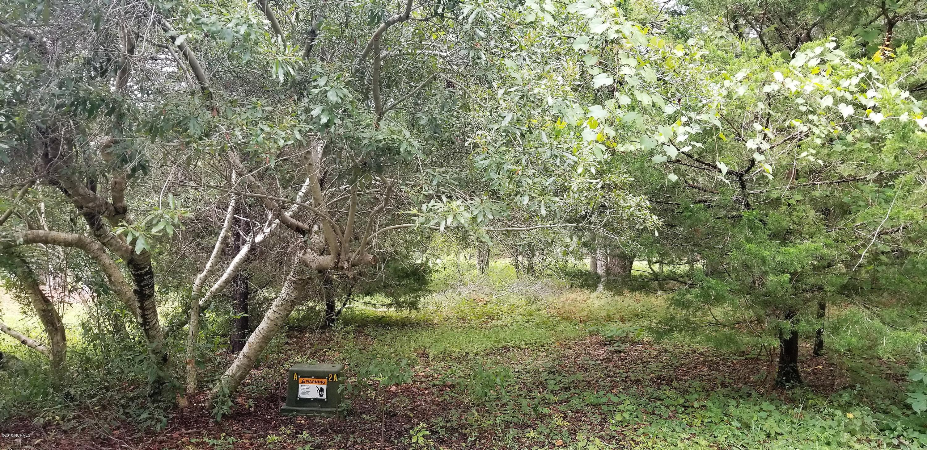 827 Blue Gill Court, Bolivia, North Carolina, ,Residential land,For sale,Blue Gill,100130600