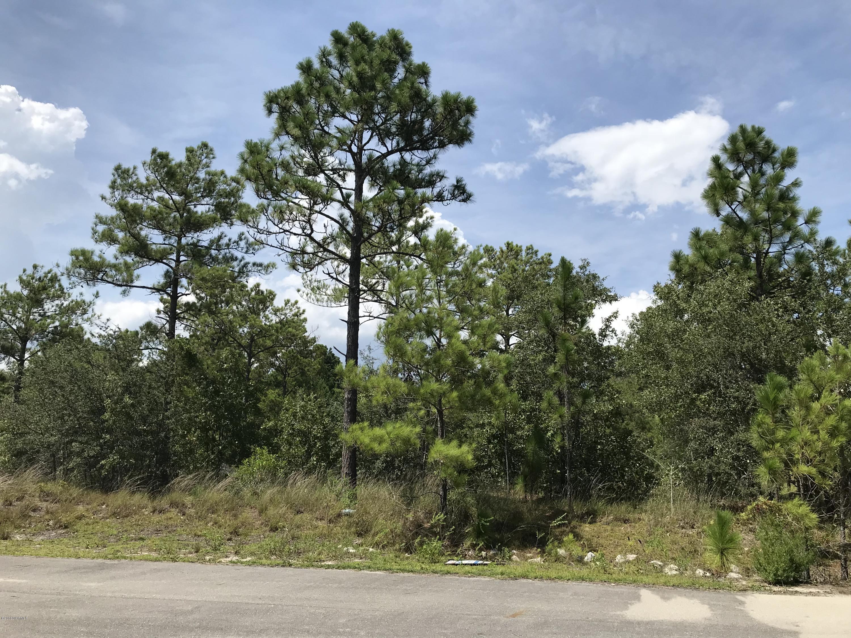Carolina Plantations Real Estate - MLS Number: 100131099