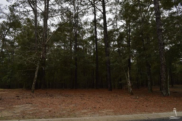 Carolina Plantations Real Estate - MLS Number: 100131206