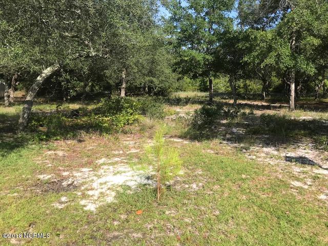 Carolina Plantations Real Estate - MLS Number: 100131309