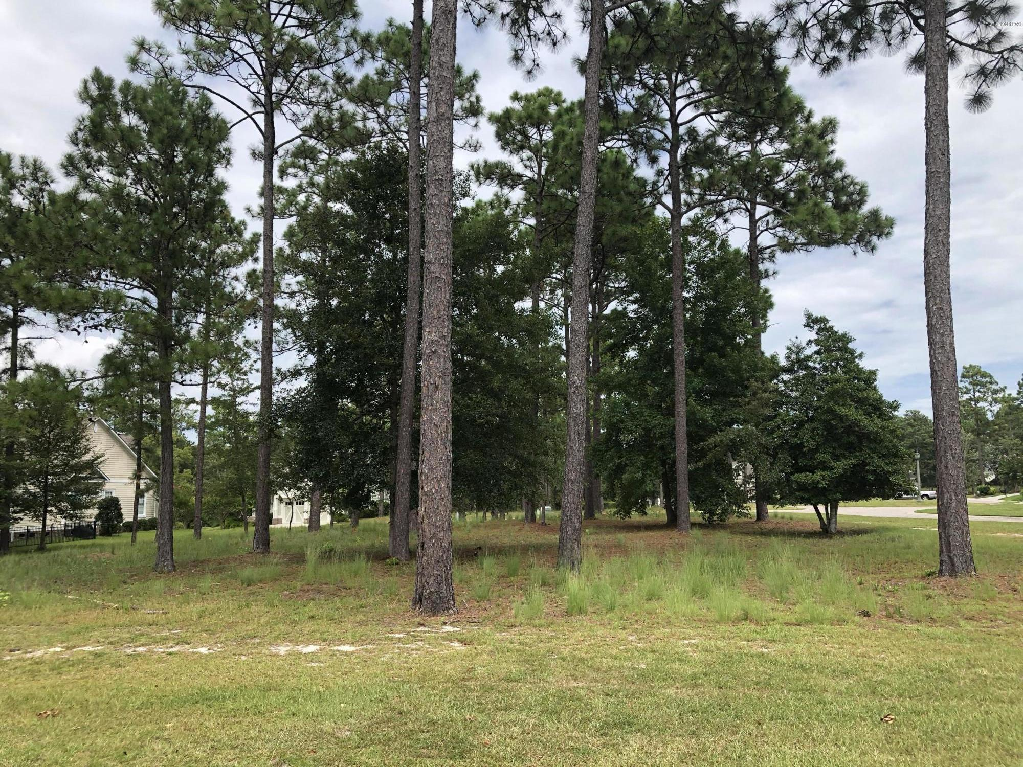 Carolina Plantations Real Estate - MLS Number: 100132045
