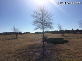 Carolina Plantations Real Estate - MLS Number: 100131546
