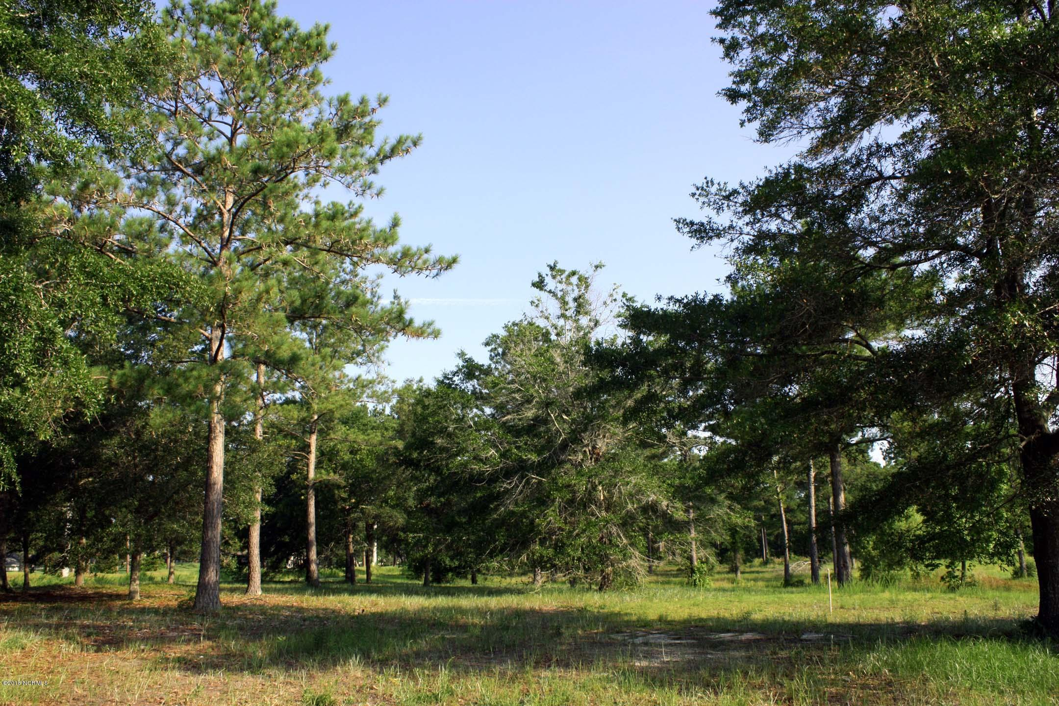 Carolina Plantations Real Estate - MLS Number: 100131859