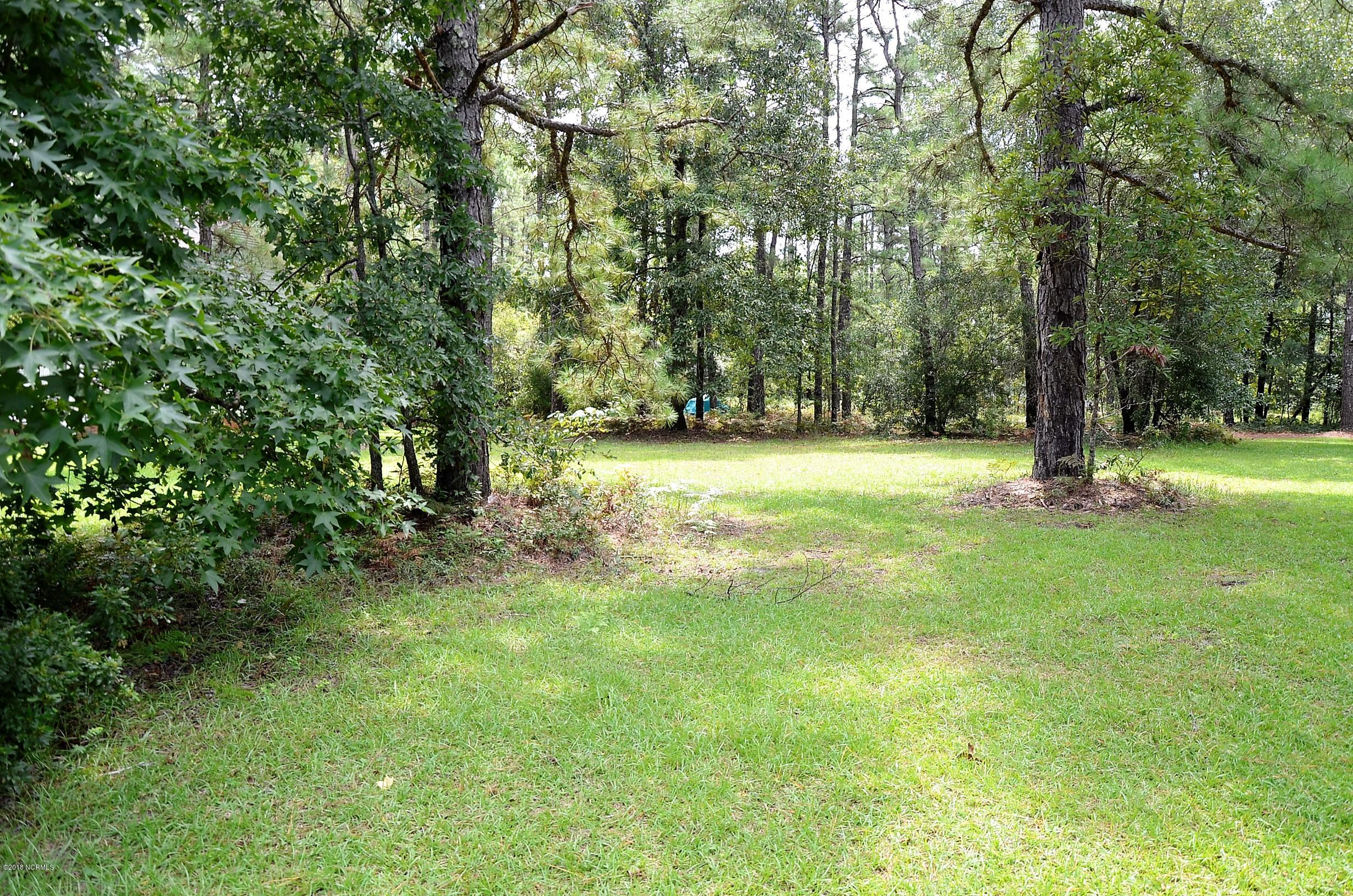 2221 Caracara Drive,New Bern,North Carolina,Residential land,Caracara,100131786