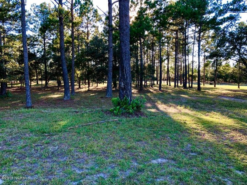Carolina Plantations Real Estate - MLS Number: 100132376