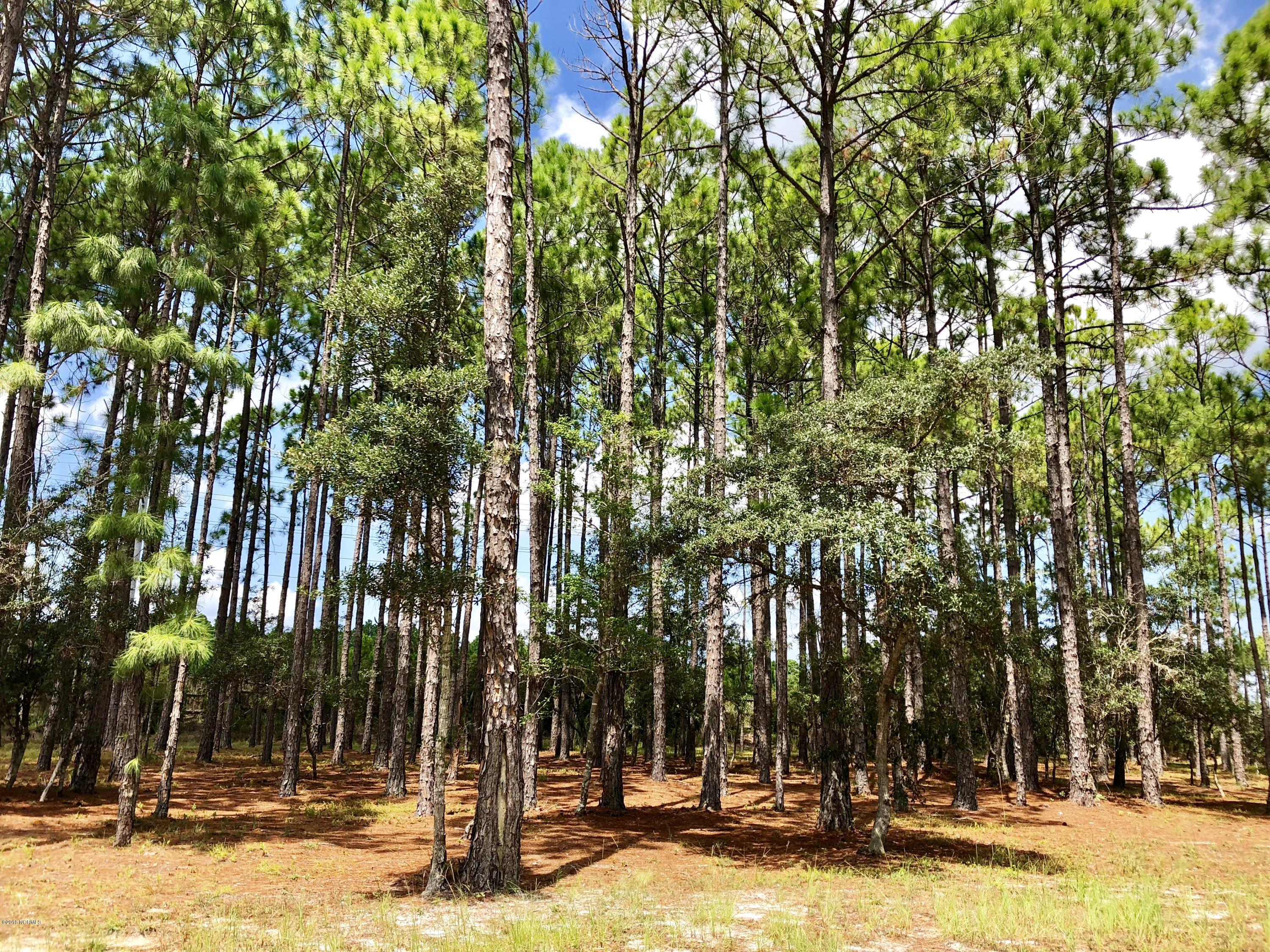 Carolina Plantations Real Estate - MLS Number: 100132410