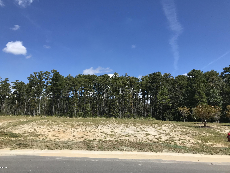 Carolina Plantations Real Estate - MLS Number: 100132286