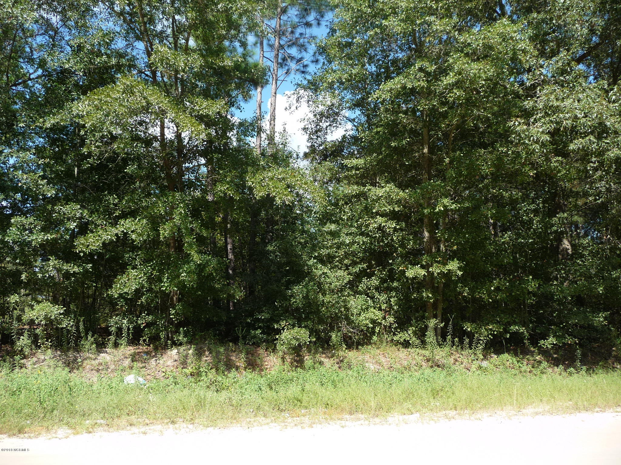 29/30 Horne Road,Laurinburg,North Carolina,Residential land,Horne,100132524