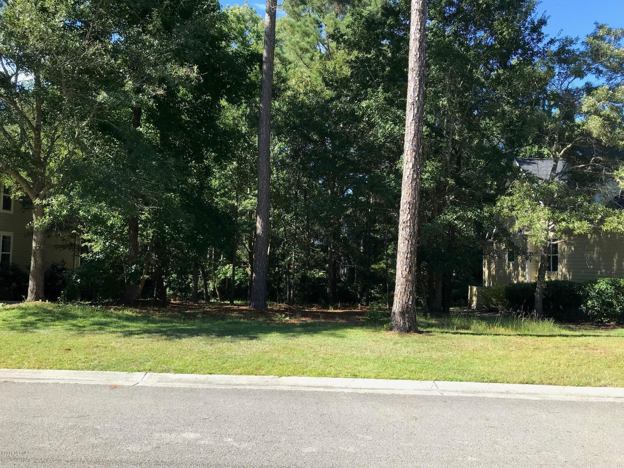 398 Blossom Tree Lane,Bolivia,North Carolina,Residential land,Blossom Tree,100132466