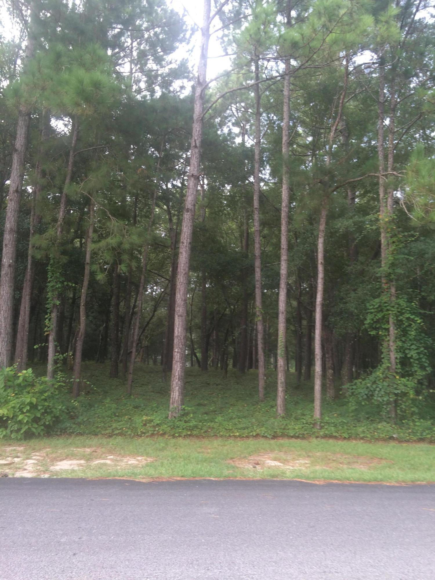 Carolina Plantations Real Estate - MLS Number: 100131851