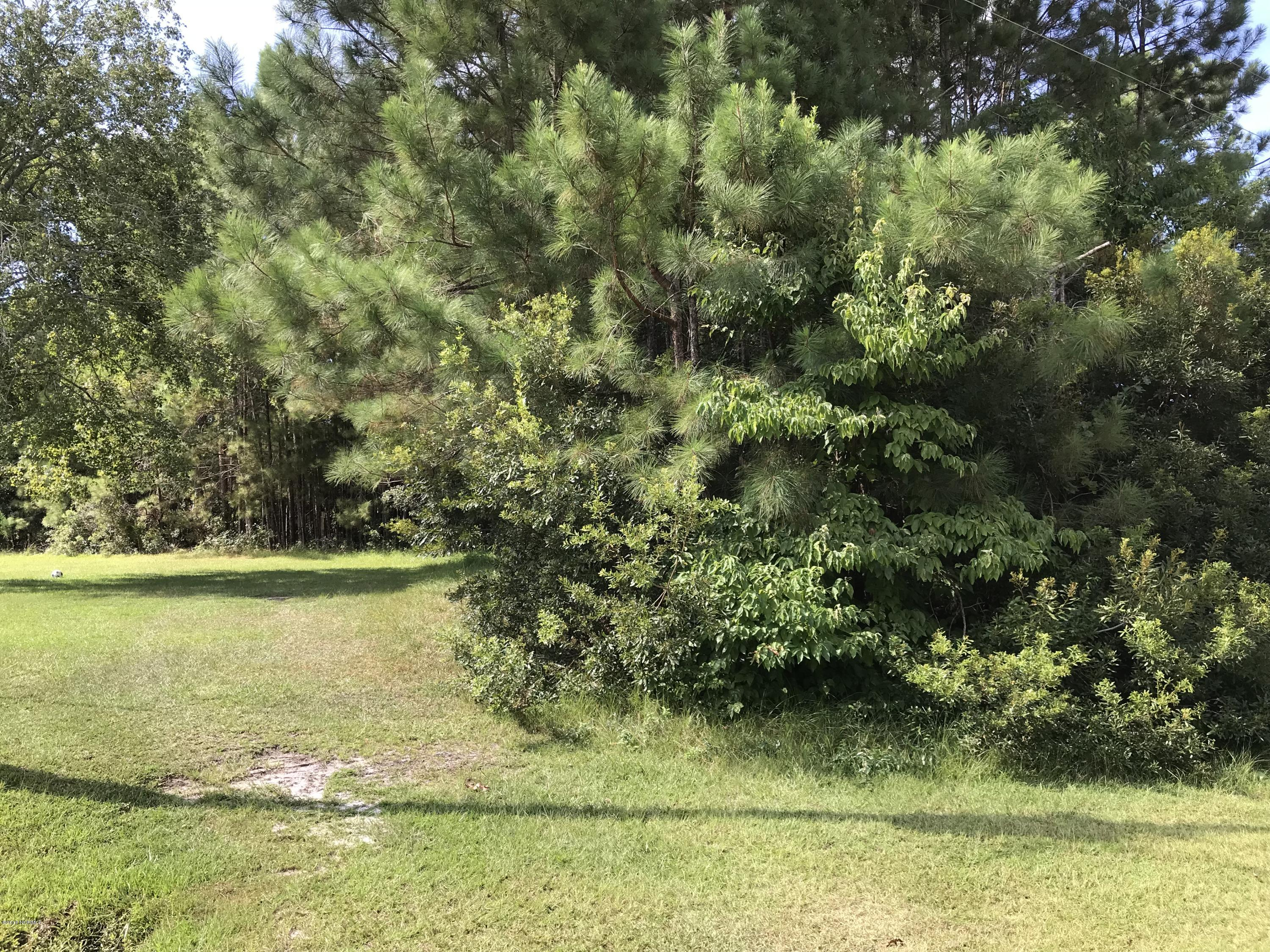 5288 Kingfisher Drive, Shallotte, North Carolina 28470, ,Residential land,For sale,Kingfisher,100133347