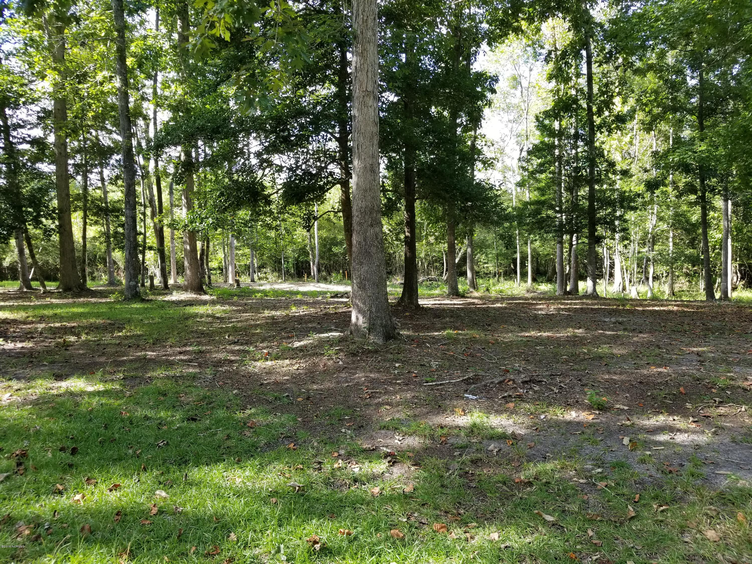 Carolina Plantations Real Estate - MLS Number: 100133209