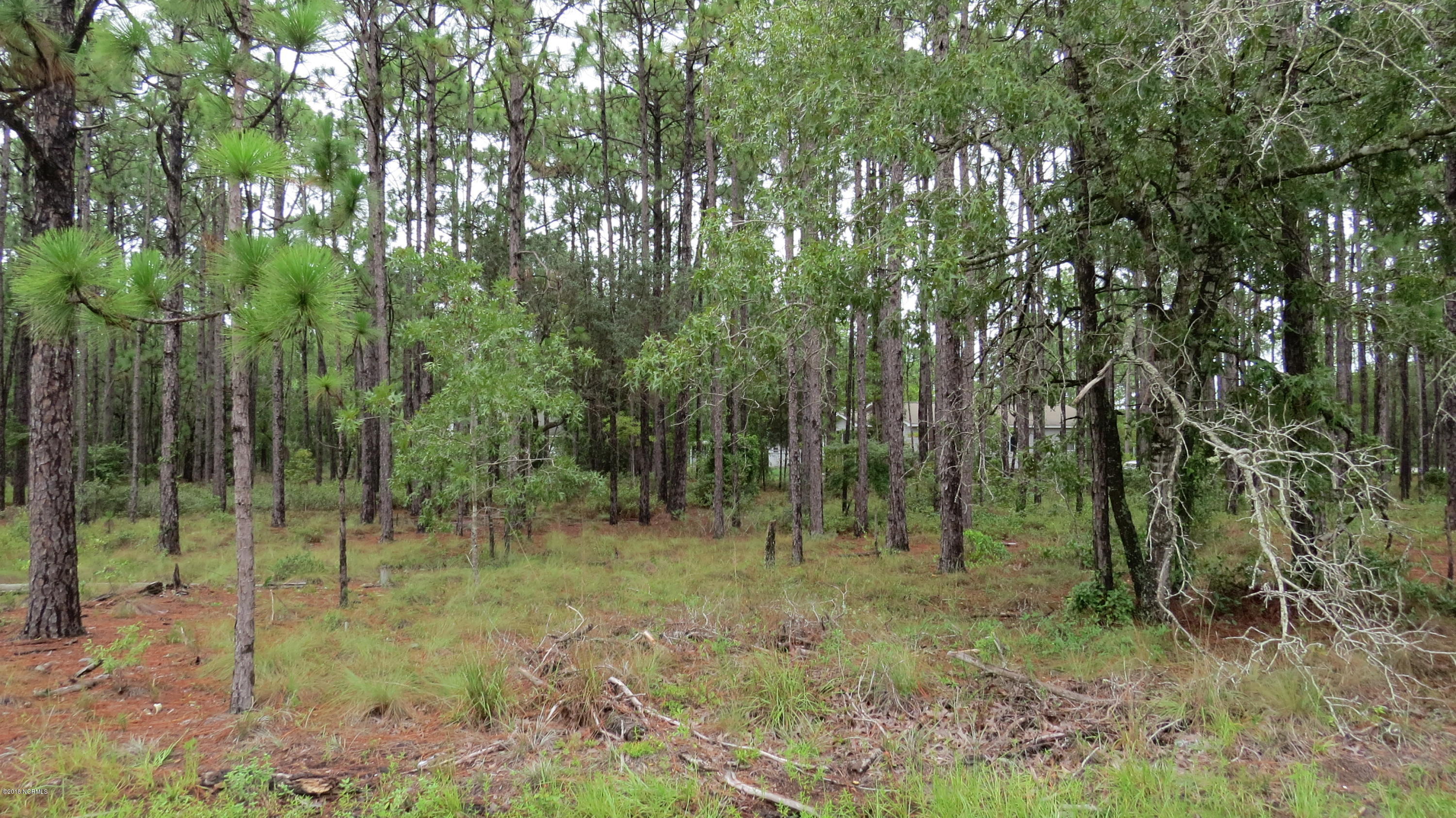 Carolina Plantations Real Estate - MLS Number: 100133306