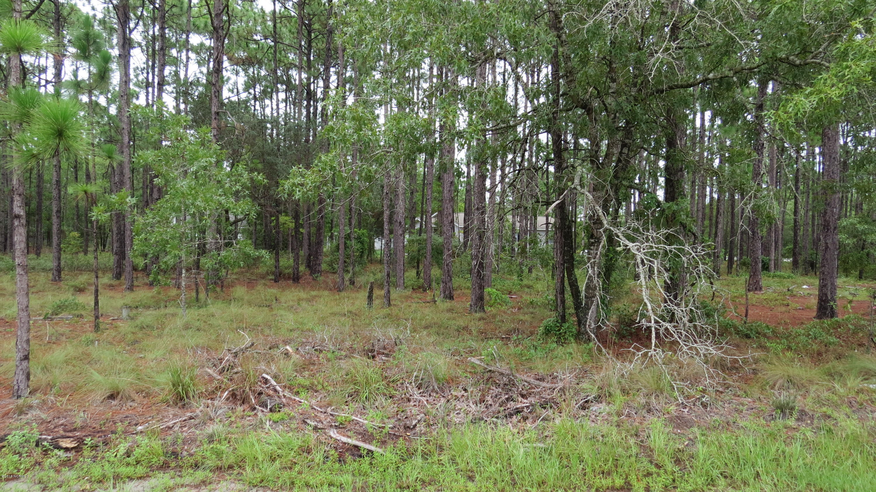 Carolina Plantations Real Estate - MLS Number: 100133338