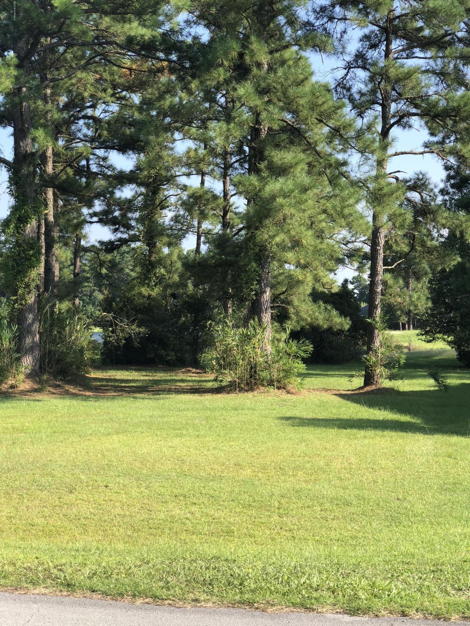 2021 Caracara Drive,New Bern,North Carolina,Residential land,Caracara,100133620