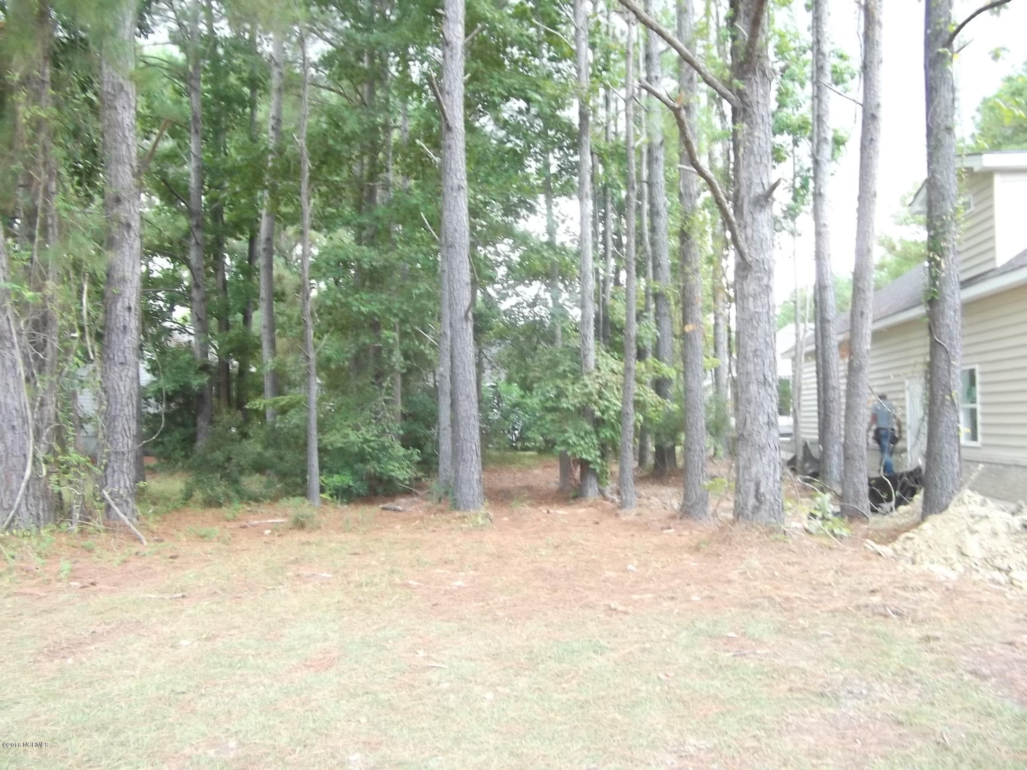 Carolina Plantations Real Estate - MLS Number: 100133710