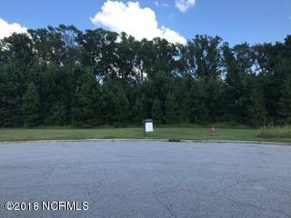1079 Cantle Court, Williamston, North Carolina 27892, ,Commercial/industrial,For sale,Cantle,100133350