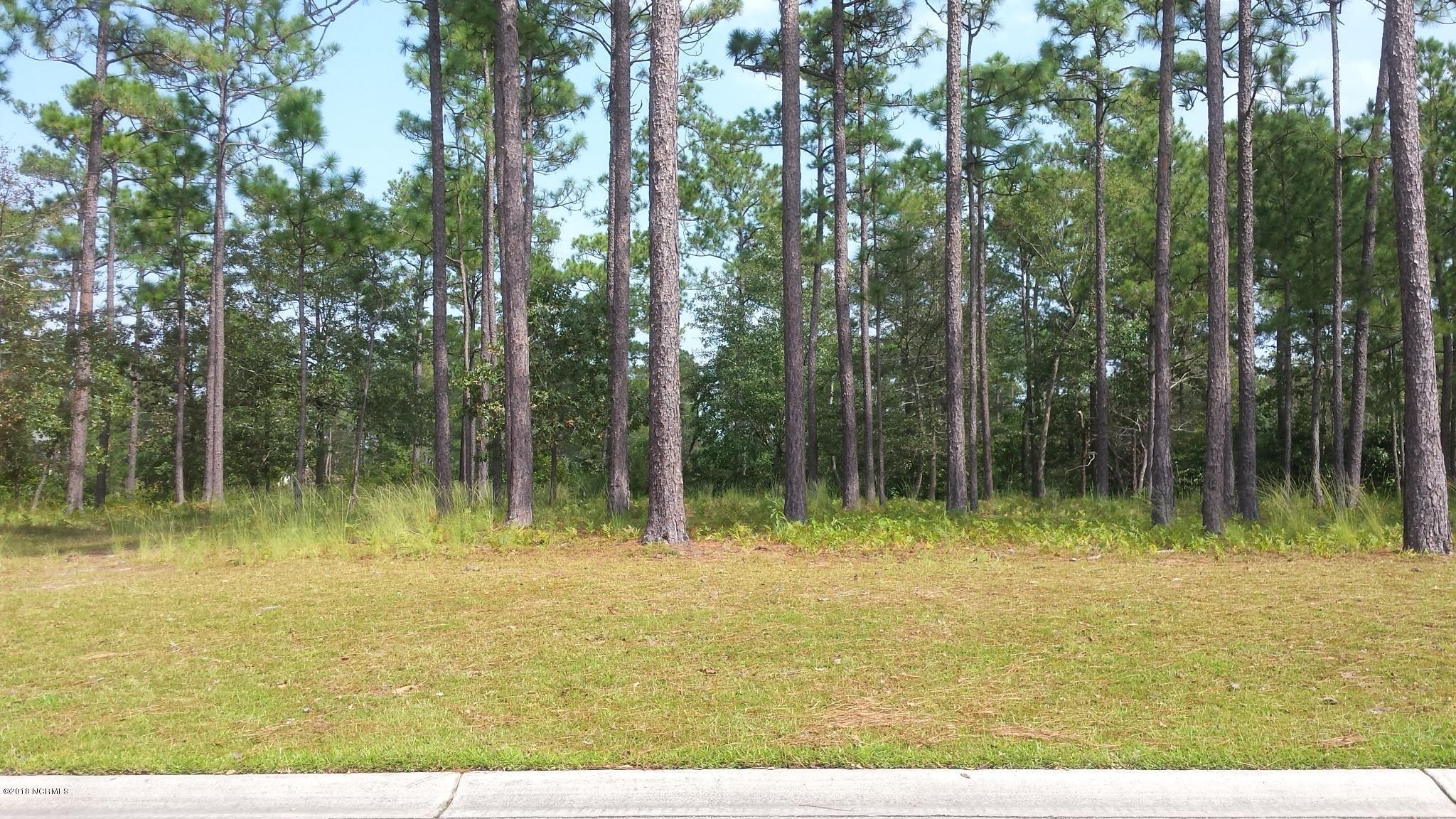 Carolina Plantations Real Estate - MLS Number: 100134507