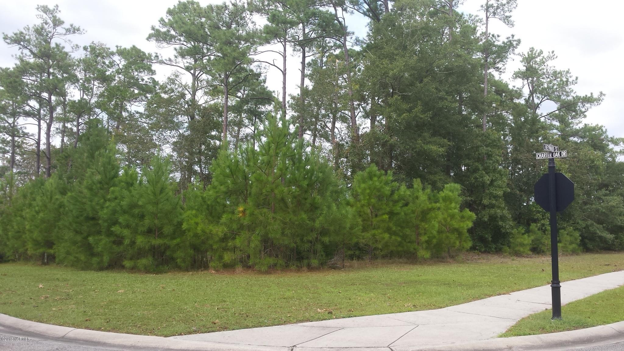 Carolina Plantations Real Estate - MLS Number: 100134552