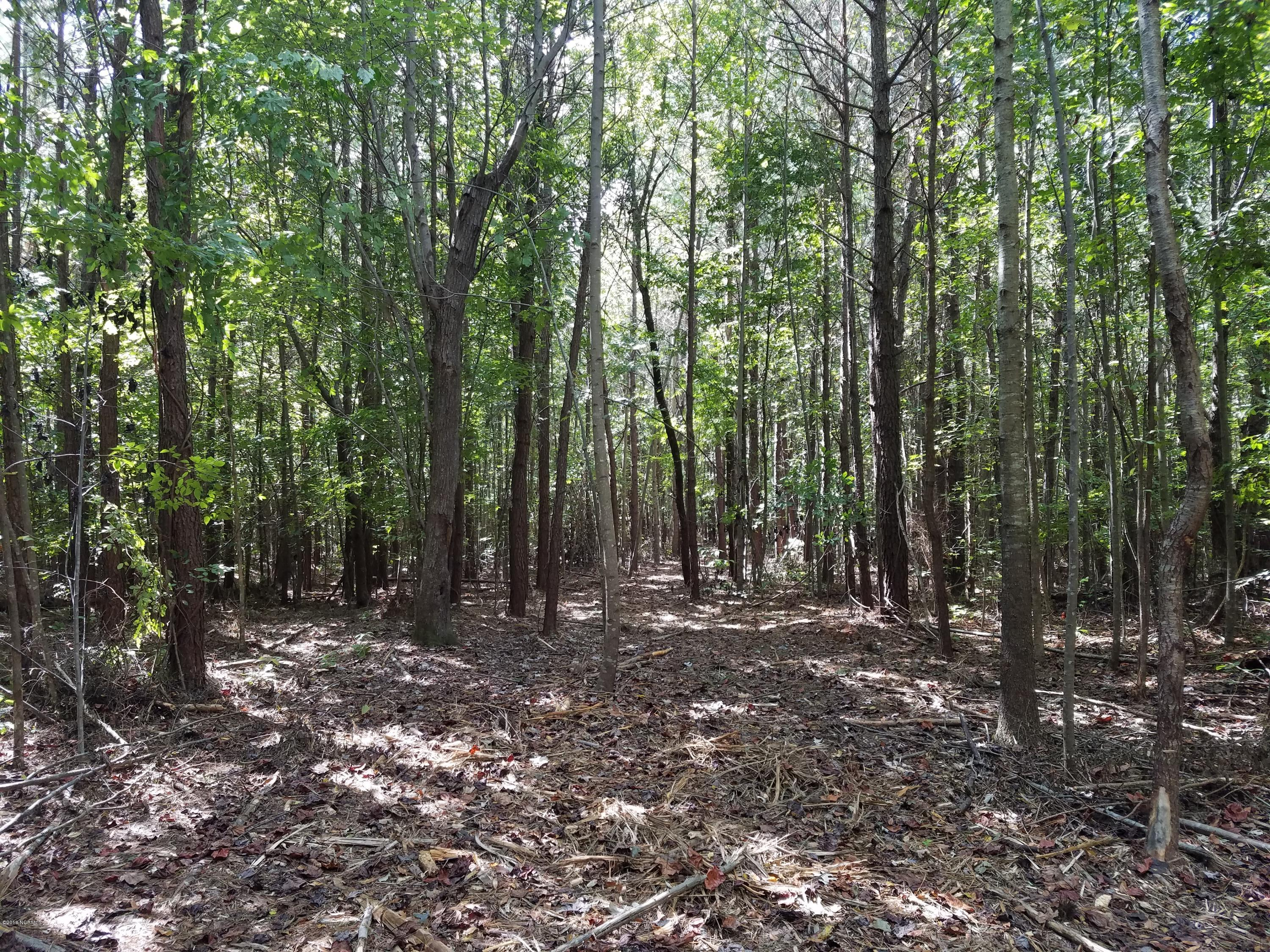 Lot A Evergreen Drive, Hertford, North Carolina 27944, ,Residential land,For sale,Evergreen,100070242