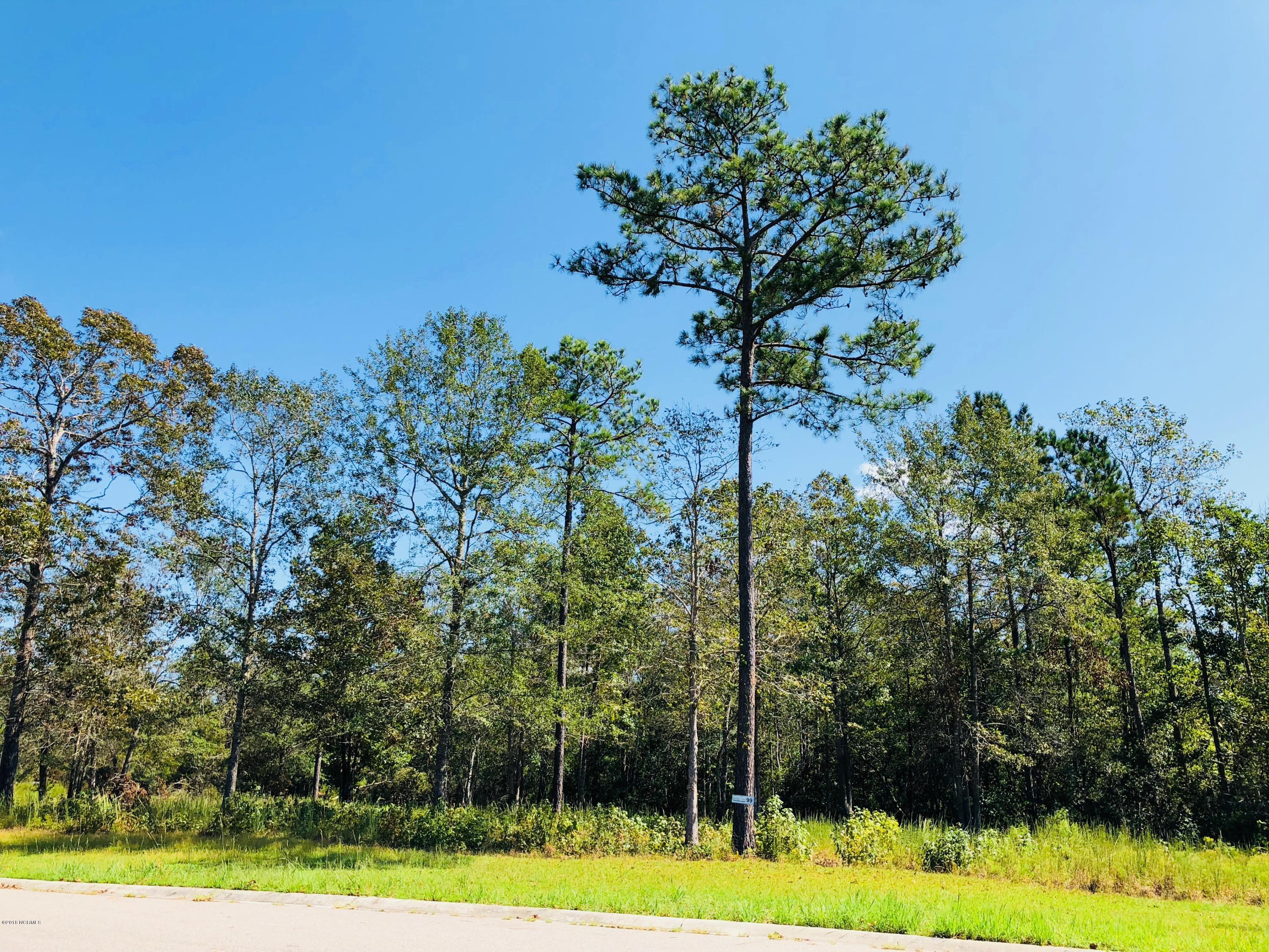 Carolina Plantations Real Estate - MLS Number: 100134997