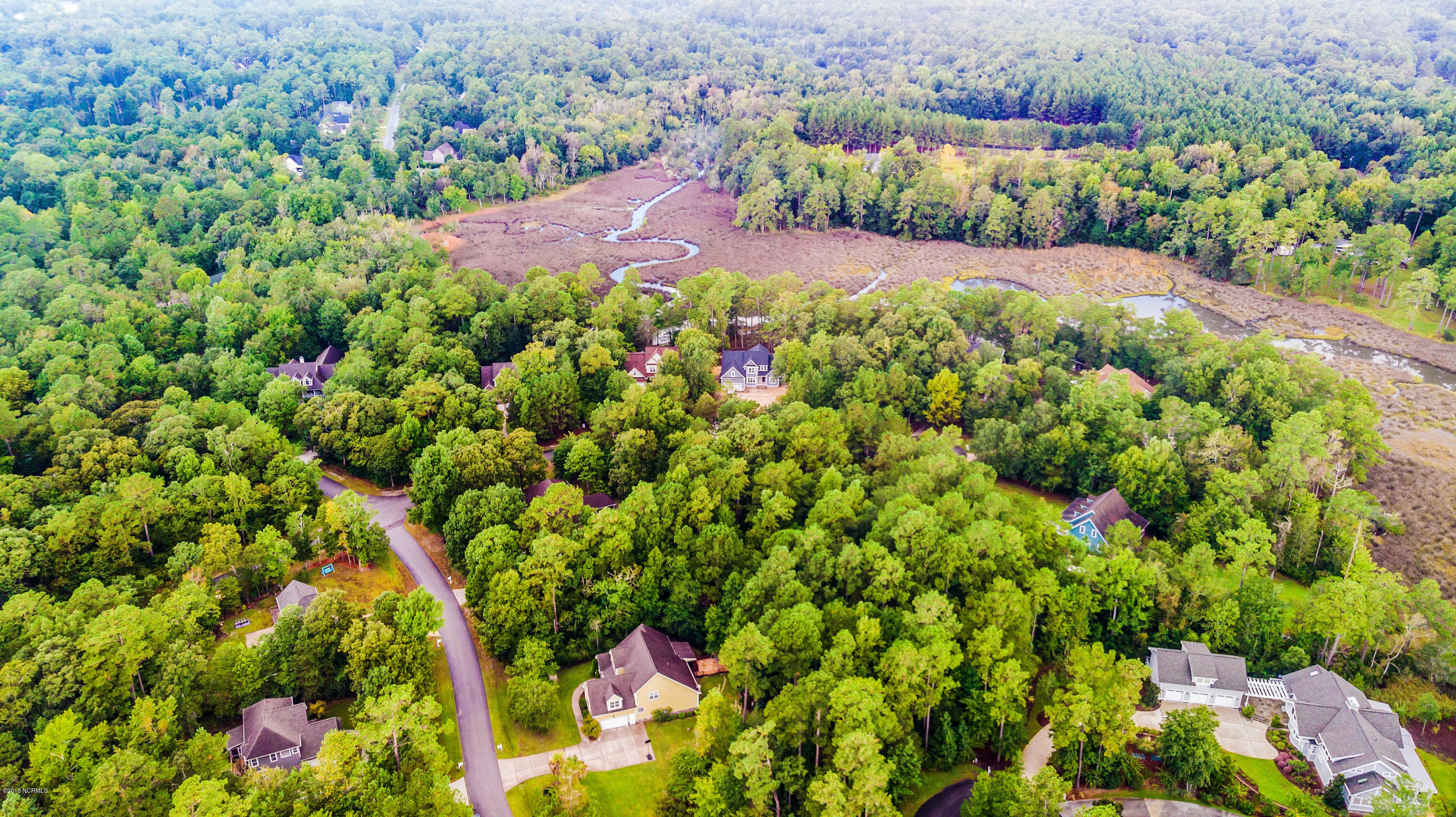 Lot 90 Pond Road, Rocky Point, North Carolina 28457, ,Residential land,For sale,Pond,100132835
