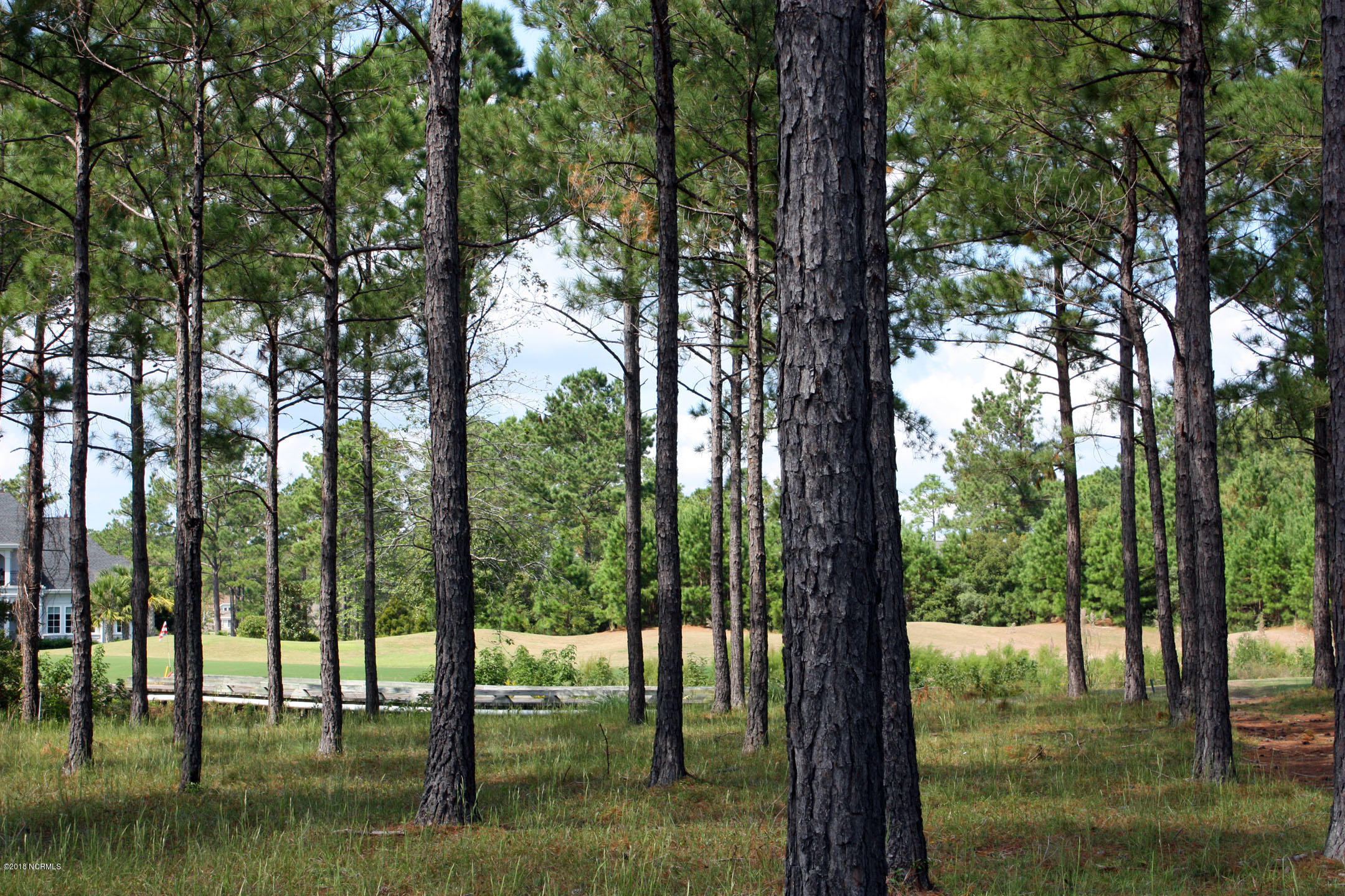 Carolina Plantations Real Estate - MLS Number: 100134716
