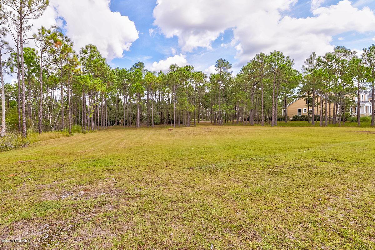 3136 Moss Hammock Wynd, Southport, North Carolina 28461, ,Residential land,For sale,Moss Hammock Wynd,100131720
