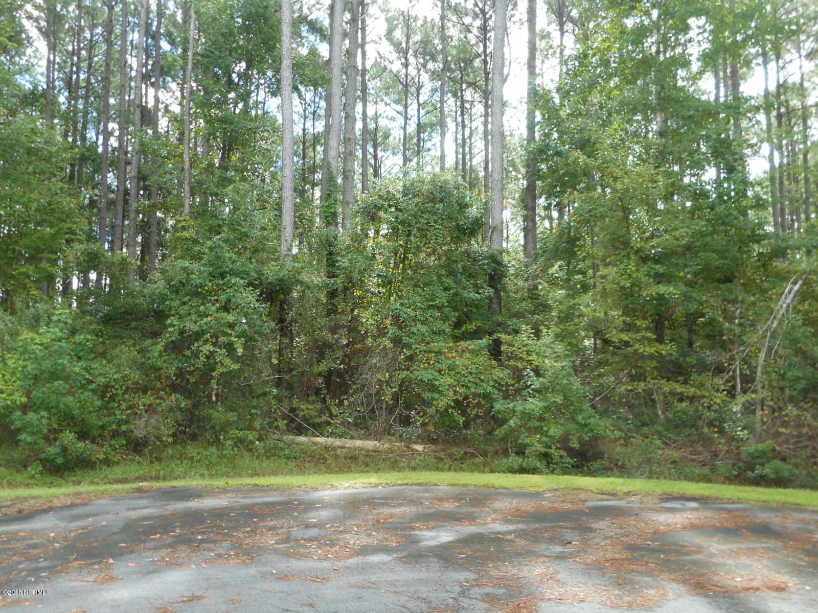 111 Coaches Creek Drive, Havelock, North Carolina, ,Undeveloped,For sale,Coaches Creek,100105202