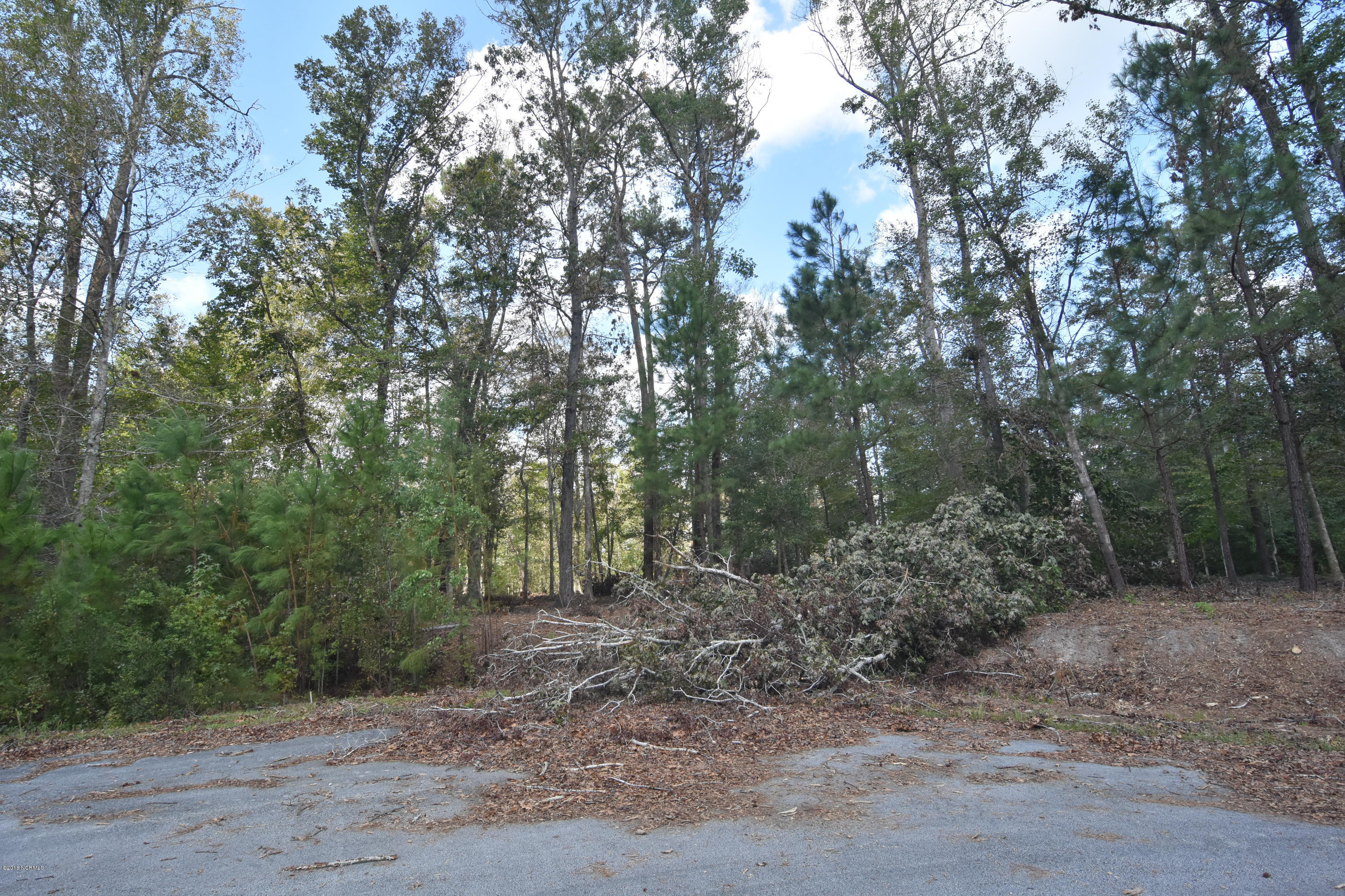 104 Duval Lane, New Bern, North Carolina 28560, ,Residential land,For sale,Duval,100113532