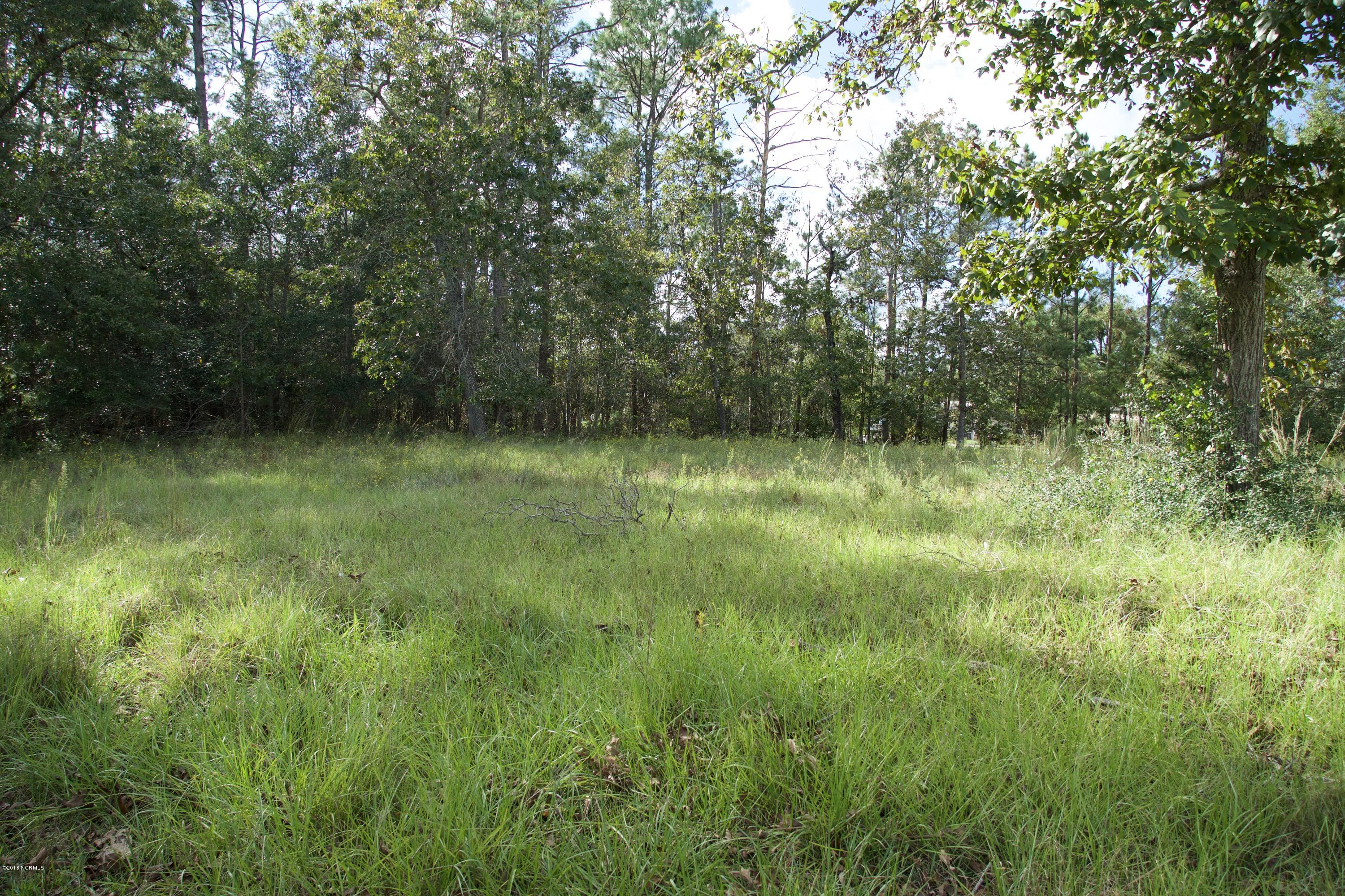 Lot 140 Violet Street,Varnamtown,North Carolina,Residential land,Violet,100135971