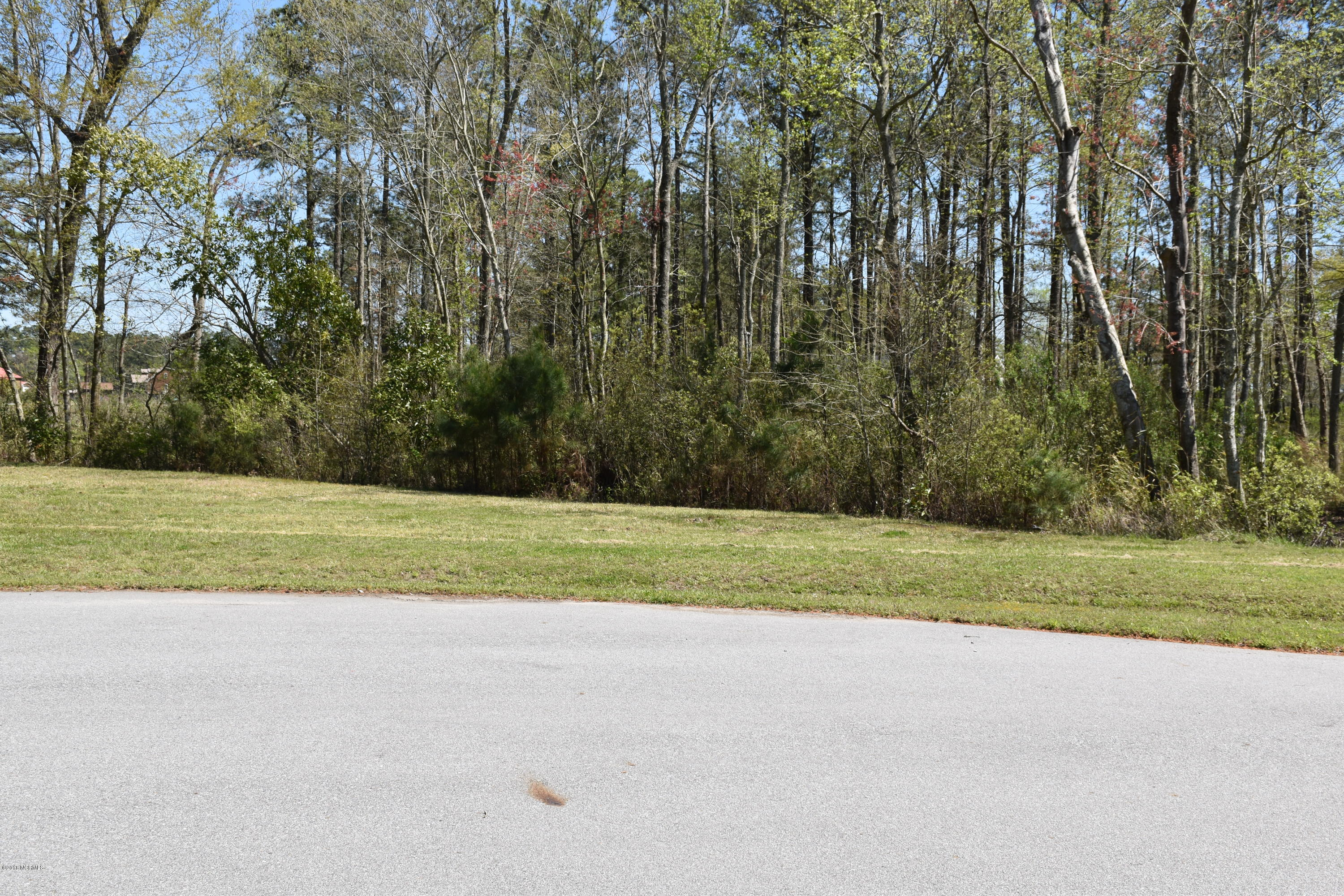 11 Northwater Court, Belhaven, North Carolina 27810, ,Residential land,For sale,Northwater,100136120