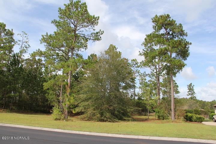 Carolina Plantations Real Estate - MLS Number: 100136263