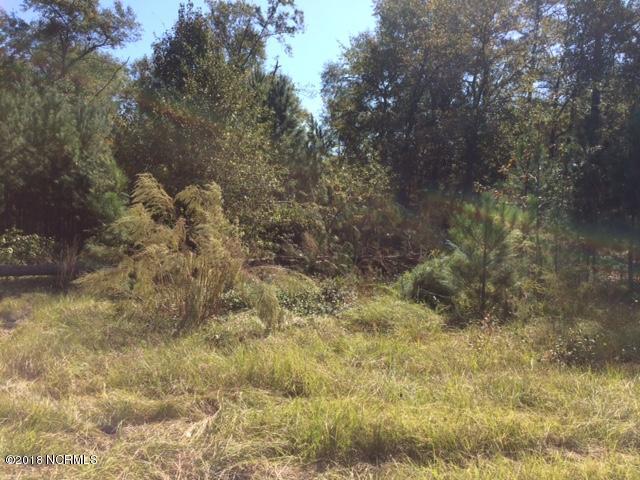 536 Oak Tree Trail,Elizabethtown,North Carolina,Undeveloped,Oak Tree,100136376